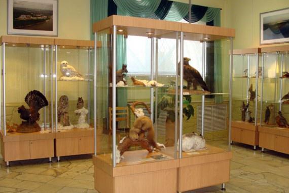 Комплексный музей, Нижнекамск