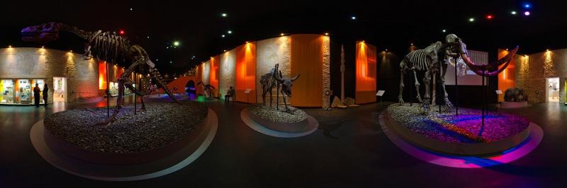 Музей пермских древностей, Пермь