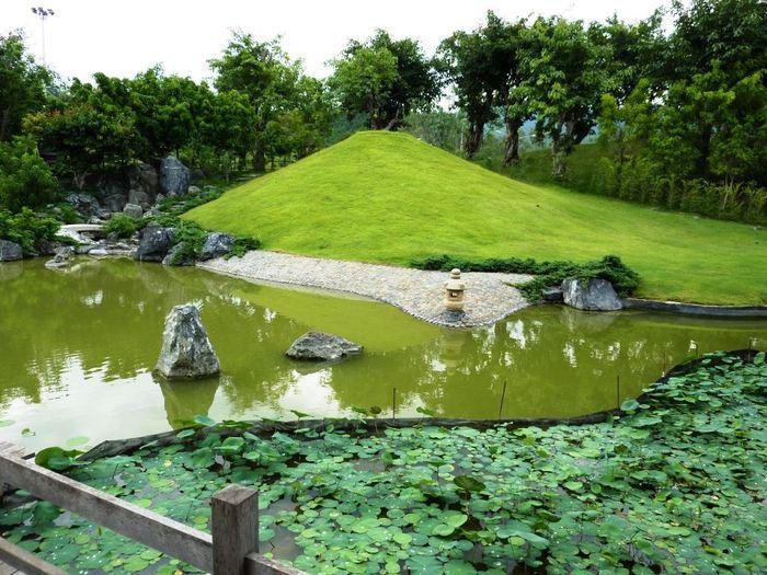 Сад камней, Пермь